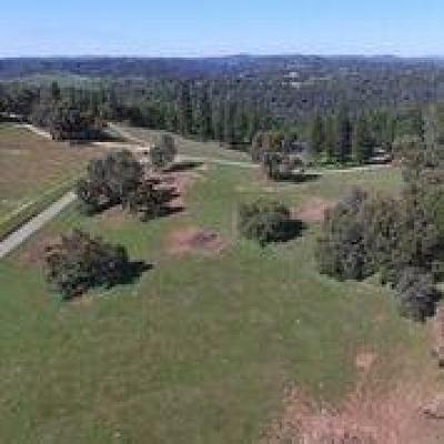 Amador County Residential Lots & Land For Sale: 23320 Bass Pond