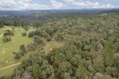 Amador County Residential Lots & Land For Sale: 13800 Oakstream Road
