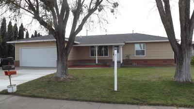 Elverta Single Family Home For Sale: 313 Rafael Drive