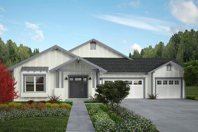 Sacramento Single Family Home For Sale: 3635 Buena Vista Drive