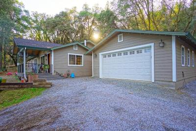 Placerville Single Family Home For Sale: 5521 Bucks Bar Circle