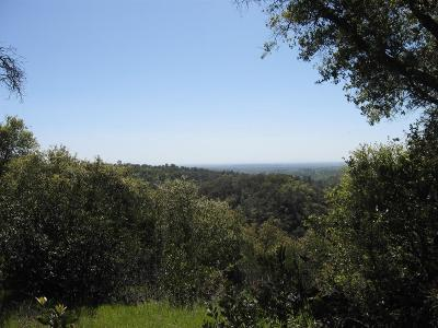 Amador County Residential Lots & Land For Sale: 40 Gold Valley Road