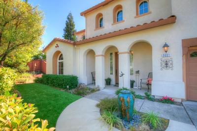 Rocklin Single Family Home For Sale: 3001 Black Oak Drive