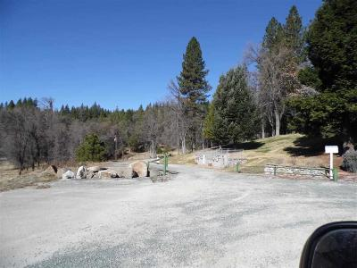 Pioneer Residential Lots & Land For Sale: 25755 Highway 88