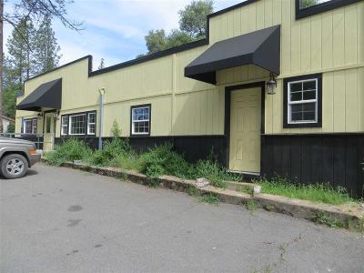 River Pines Commercial For Sale: 14819 Shenandoah Road