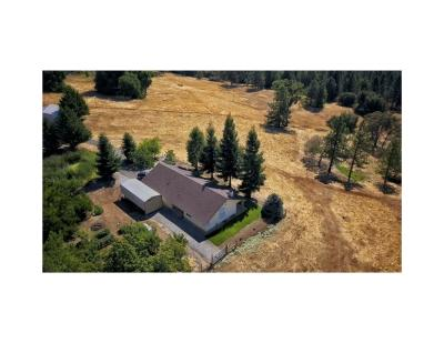 Volcano CA Single Family Home For Sale: $1,000,000