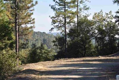 Sutter Creek Residential Lots & Land For Sale: 15350 Autumn Drive