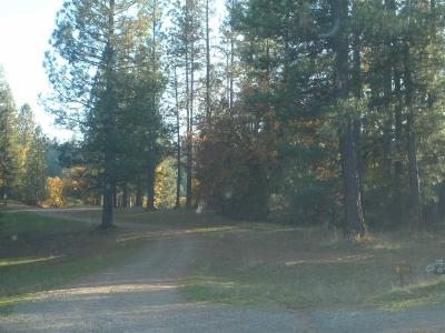 Wilseyville Residential Lots & Land For Sale: Blue Mountain Road