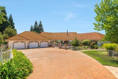 Auburn Single Family Home For Sale: 4055 Puzzlewood Lane