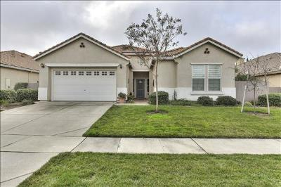 El Dorado Hills Single Family Home For Sale: 9022 Fallsmont Drive