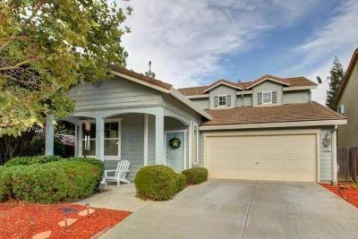 Elk Grove Single Family Home For Sale: 10001 Schuler Ranch Road