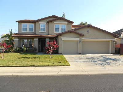 Roseville Single Family Home For Sale: 1656 Snow Goose Way