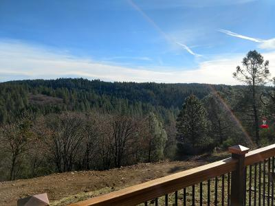 Pollock Pines Single Family Home For Sale: 5000 Shooting Star Road
