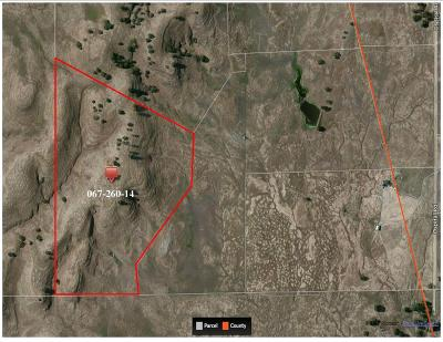 San Joaquin County Commercial Lots & Land For Sale: Ospital Road