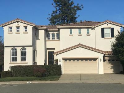 Auburn Single Family Home For Sale: 764 Grandview Drive