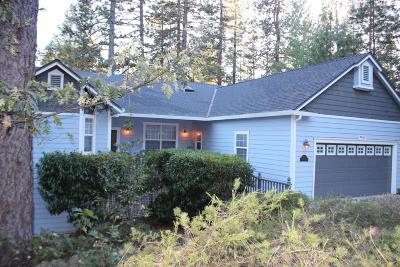 Grass Valley Single Family Home For Sale: 224 Scotia Pines Circle