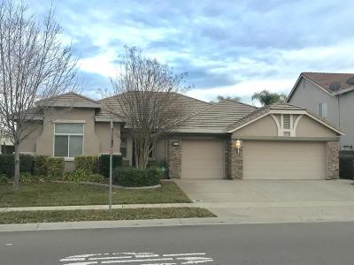 Elk Grove Single Family Home For Sale: 9757 Toscano Drive