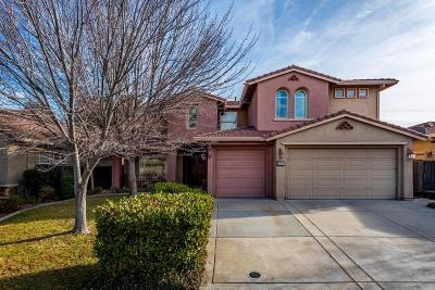 Roseville Single Family Home For Sale: 1901 Morella Circle