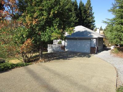 Cool Single Family Home For Sale: 1819 American River Trail