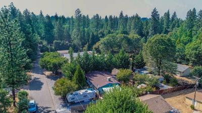 Pine Grove Single Family Home For Sale: 20563 Marimac