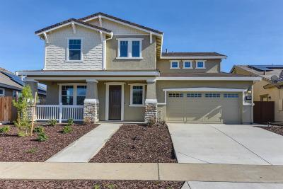 Rancho Cordova Single Family Home For Sale: 3561 Edington Drive