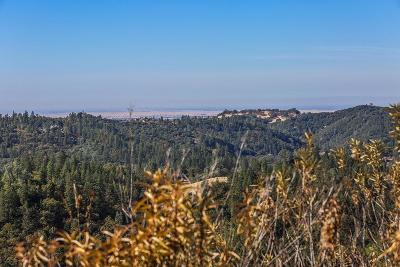 Amador County Residential Lots & Land For Sale: 14255 Quartz Mountain Road