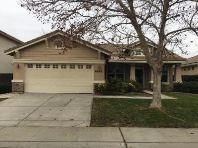 Elk Grove Single Family Home For Sale: 8686 Heritage Hill Drive