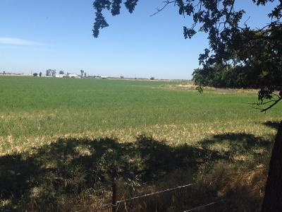 San Joaquin County Commercial Lots & Land For Sale: 9450 Lower Sacramento Road
