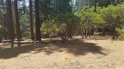 Amador County Residential Lots & Land For Sale: 19900 East Pine Drive