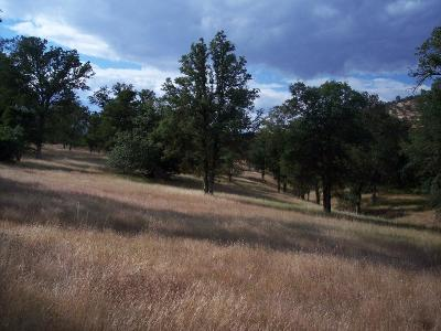 Yuba County Residential Lots & Land For Sale: 1 Turkey Hollow Trail