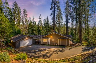 Pine Grove Single Family Home For Sale: 21200 Lonesome Lane