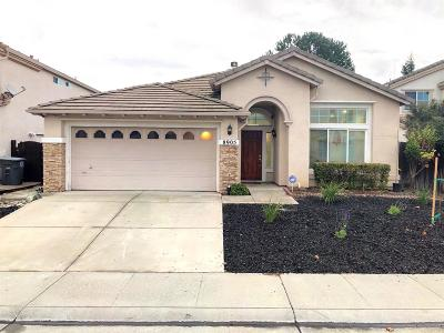 Elk Grove Single Family Home For Sale: 8905 Camino Place Court
