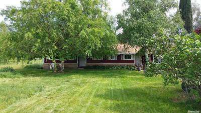 Elk Grove Single Family Home For Sale: 10865 Wilton Road