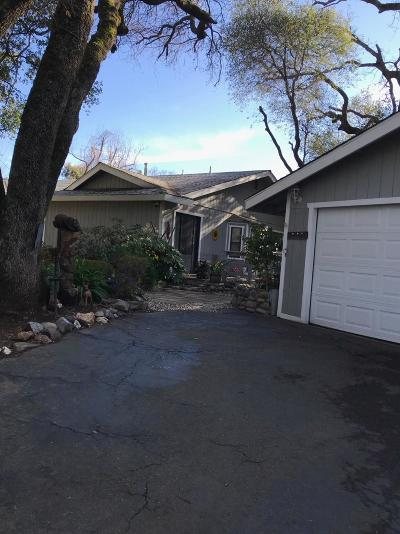 Placerville Single Family Home For Sale: 1344 Discovery Lane