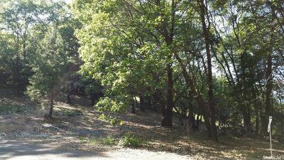Placer County Residential Lots & Land For Sale: The Bluffs