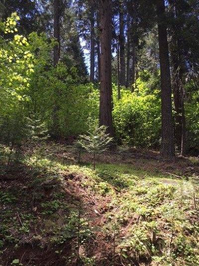 Pollock Pines Residential Lots & Land For Sale: 6329 Topaz
