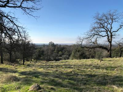 Amador County Residential Lots & Land For Sale: 1595 Long Gate Road
