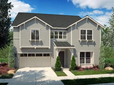 Davis Single Family Home For Sale: 896 Pierce Lane