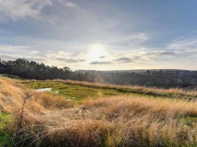 Sutter Creek Residential Lots & Land For Sale: Citta Vista