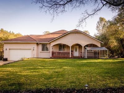 Jackson Single Family Home For Sale: 17804 Nills Way