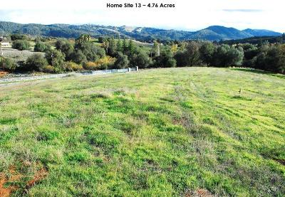 Newcastle Residential Lots & Land For Sale: 3140 Rattlesnake Bar-Lot #13 Road
