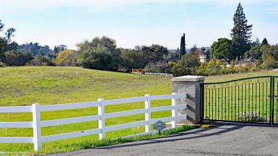 Placer County Residential Lots & Land For Sale: 9930 Green Hill- Lot #4 Court