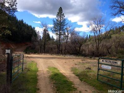 El Dorado County Residential Lots & Land For Sale: 2962 Greenwood Road