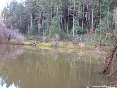 El Dorado County Residential Lots & Land For Sale: Greenwood Road