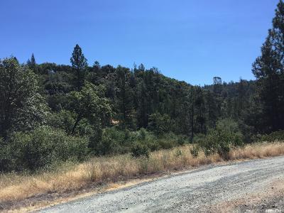 El Dorado County Residential Lots & Land For Sale: Rio Cascada