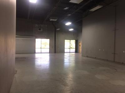 Auburn Commercial For Sale: 11905 Dry Creek Road