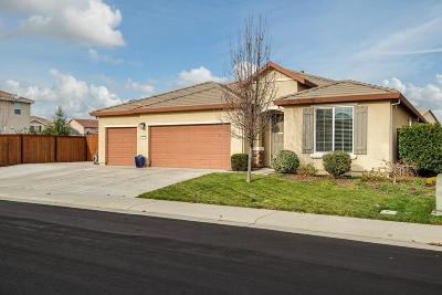 Roseville Single Family Home For Sale: 1137 Essington Lane