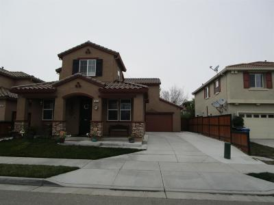 Lathrop Single Family Home For Sale: 16959 Shady Mill Way