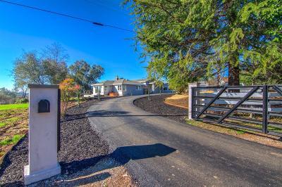 Auburn Single Family Home For Sale: 901 Bonnie Lane