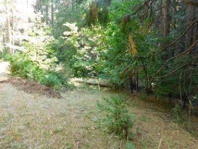 Amador County Residential Lots & Land For Sale: 27394 Ashland Drive
